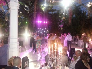 wedding discos sefton park palm house
