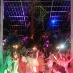 wedding dj sefton park palm house