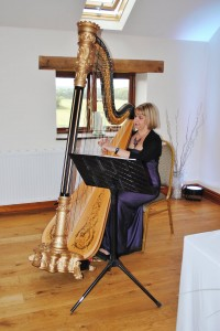 harpist preston