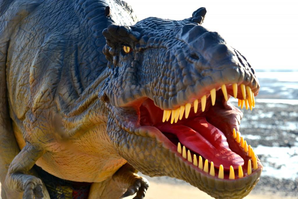 T Rex Animatronic Dinosaur