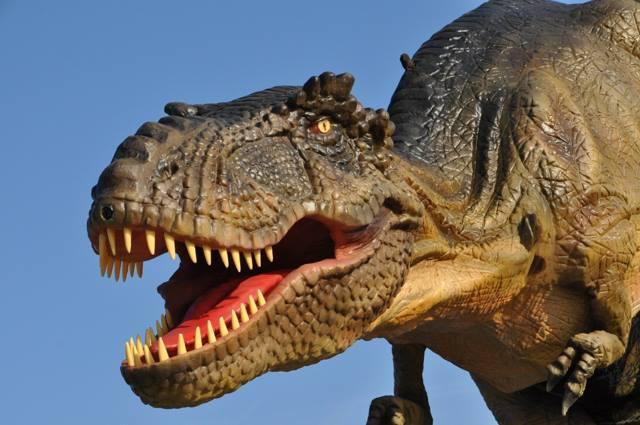 T Rex Lifesize Dinosaur