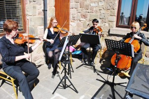 string quartet preston
